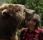 ¿Es posible domesticar a un oso?