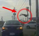 Motorista sale volando tras un atropello