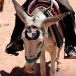 La fiebre de las marcas llega al desierto