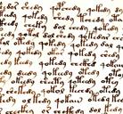Grandes Misterios: el Manuscrito Voynich